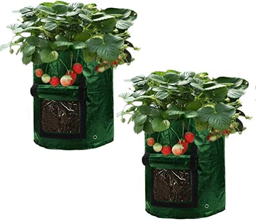 Asunflower Bolsa de cultivo para plantas de jardín de 10 galones ...