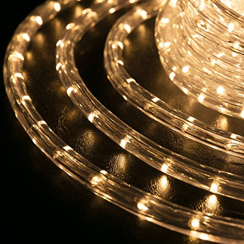 WYZworks 100 feet 1/2'' Thick WARM WHITE Pre-Assembled LED Rope Lights with 10', 25', 50', 150' option - Christmas Holiday Decoration Lighting | UL Certified by WYZworks (Image #2)