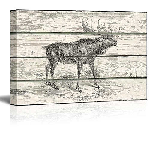 Illustration of a Brown Deer on a Rustic Wooden Background