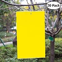 Ecwin 20 Paquete Trampas de Insectos de Doble