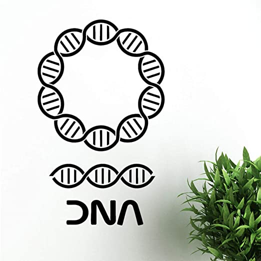 Mbambm Pegatinas De Pared De Adn Genealogía Biología Escuela De ...