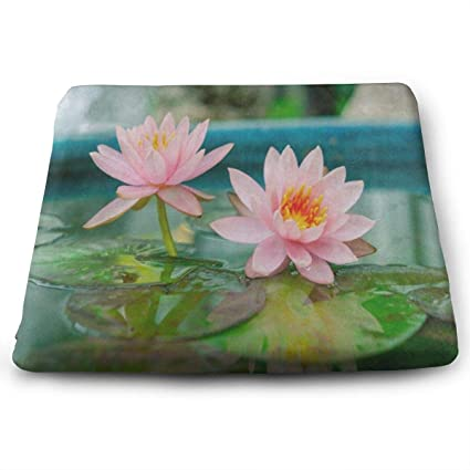 Memory Foam Water Lily.Amazon Com Ladninag Seat Cushion Pink Waterlily Lotus