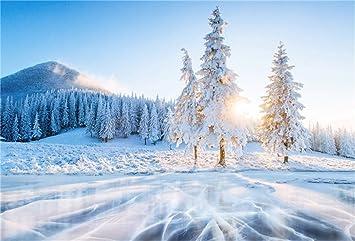 Buenn 5x3ft Albero Coperto Neve Luce Solare Inverno Sfondo
