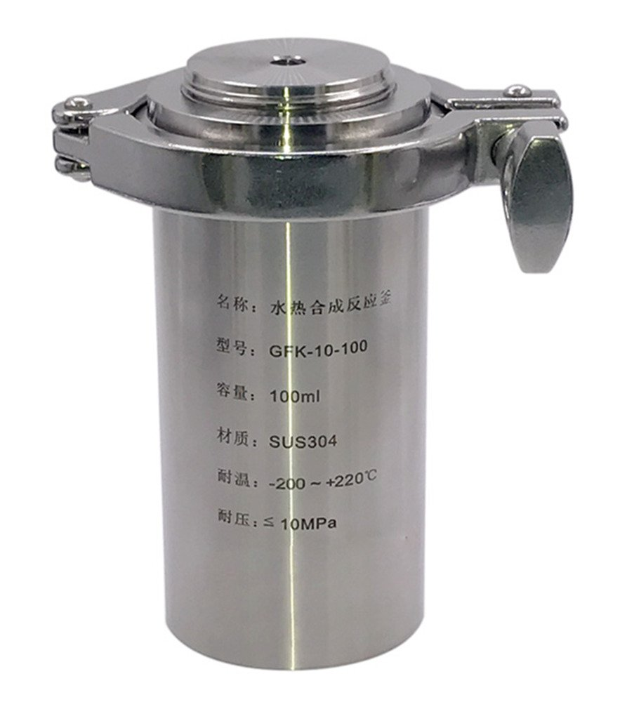 BAOSHISHAN 100ml Hydrothermal Synthesis Autoclave Reactor High-Pressure 10MPa 260℃ Stainless Steel Tank Lab Reactor with Pressure Relief Hole Explosion-Proof Safety Valve (100ml)