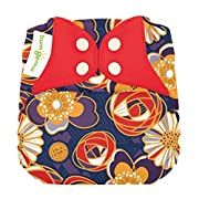 Limited Edition: bumGenius Elemental 3.0 All-in-One One-Size Cloth Diaper with Organic Cotton (Maggie)