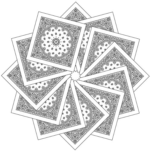 Paisley 100% Cotton Bandanas, 12 Pack Men and Women Cotton Bandana Paisley Print Headwrap Handkerchief White