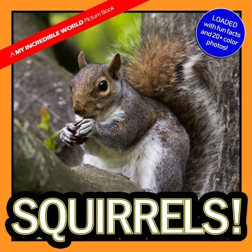 Squirrels!: A My Incredible World Picture Book (Volume - Platform 2 My