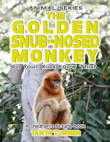 THE GOLDEN SNUB-NOSED MONKEY Do Your Kids Know This?: A Children's Picture Book  (Amazing Creature Series 93)