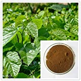 Mulberry Leaf Extract 4:1 Herbal Extract Powder 5 grams