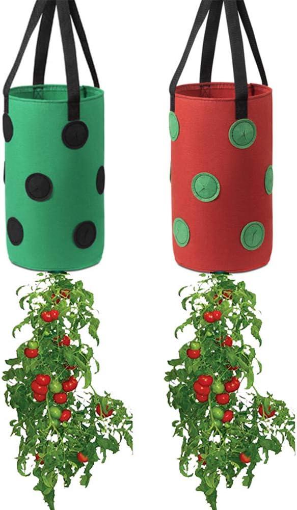 2 Pack Gardens Upside Down Planter-3 Gallon Hanging Strawberry Planter,Strawberry Floral Grow Pot for Garden