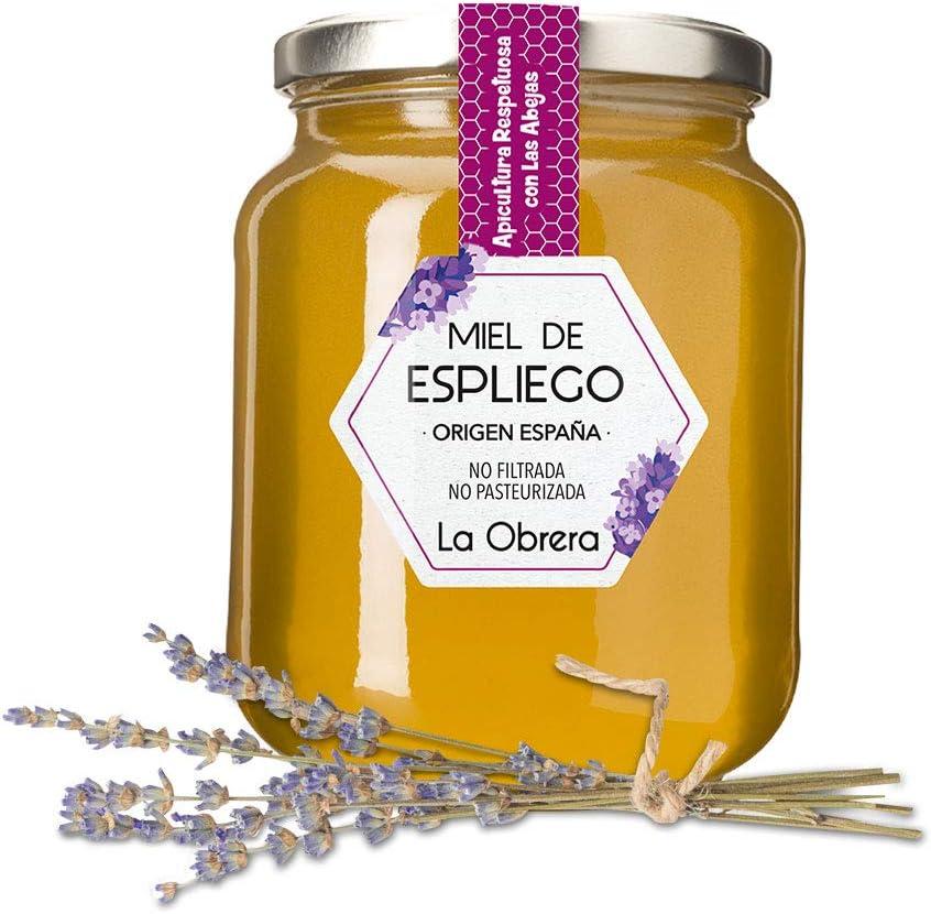 La Obrera - Miel Pura de Espliego - 100% Origen España - 950 g: Amazon.es: Alimentación y bebidas