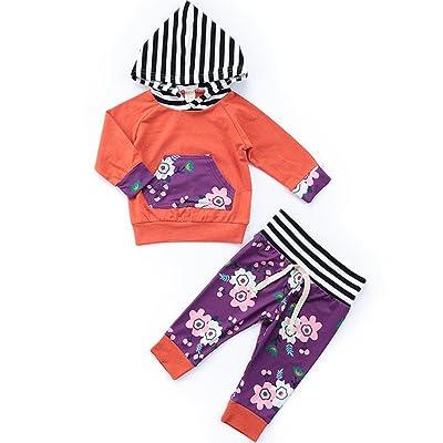 AutumnFall New Cute Autumn Baby Floral Stripe Print Hoodie Tops+Pants  Clothes 4ccbdd9b1