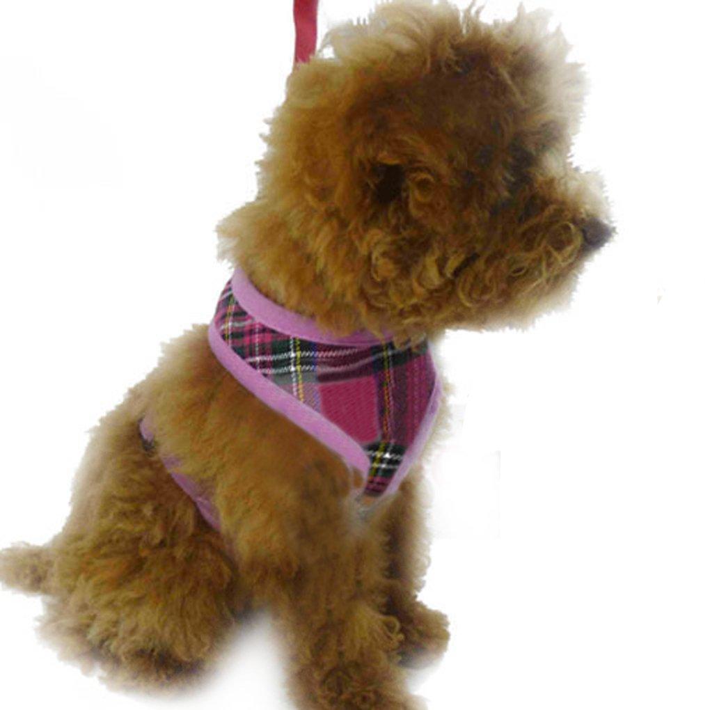 Amazon.com : FakeFace Non Pull Small Medium Pet Dog Cat Puppy Comfort Control Leash Harness Soft Cotton Breathable Mesh Adjustable Walking Collar Vest ...