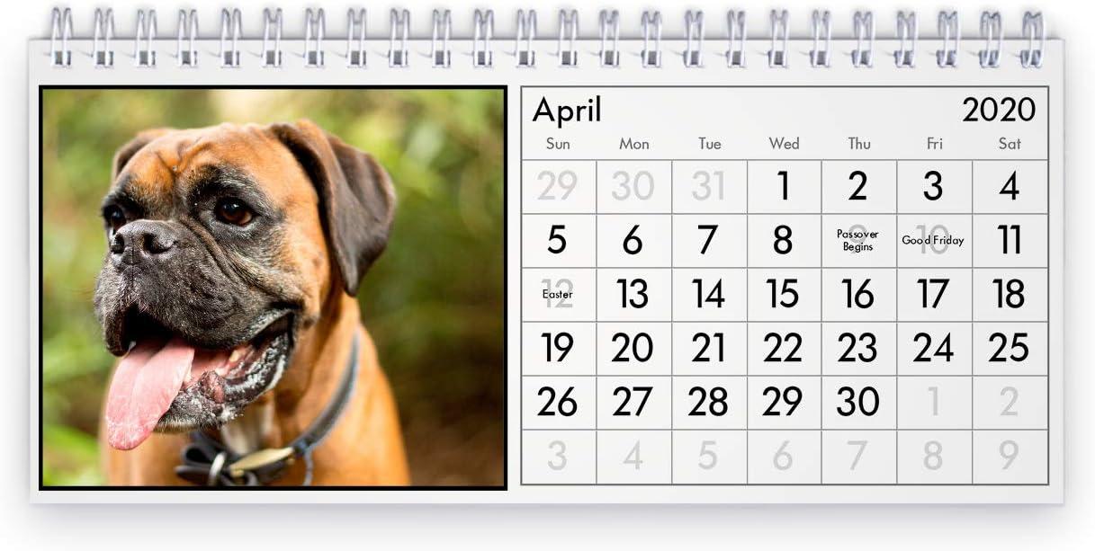 Boxer 2020 Desk Calendar
