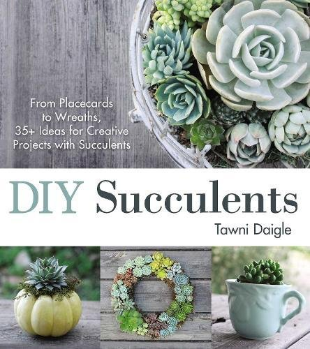 DIY Succulents: From Placecards to Wreaths, 35+ Ideas for Creative Projects with Succulents]()