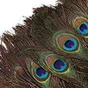 DGM946 100pcs Natural Peacock Feathers with Eye Peacock Tail Feathers