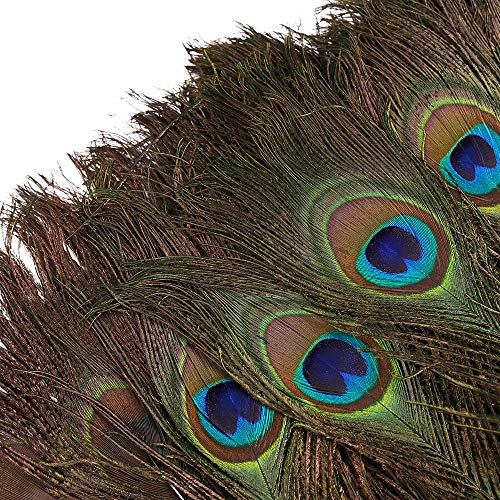 DGM946 100pcs Natural Peacock Feathers with Eye Peacock Tail Feathers (Large For Peacock Feathers Sale)
