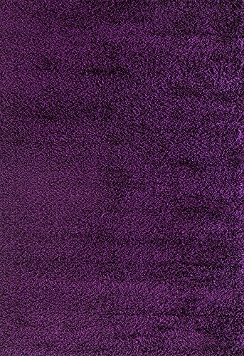 ADGO Chester Shaggy Collection Soft Silky High Pile Fluffy Area Rugs for Living Room & Dining Room | Cozy Shag Indoor & Outdoor Floor Rug (5′ x 7′, S04 – Purple)