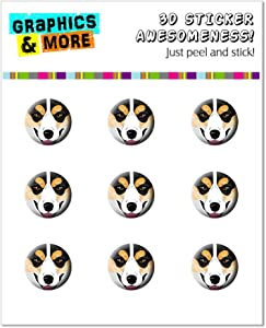 Graphics and More Tri-color Pembroke Welsh Corgi Face - Dog Pet Home Button Stickers Fits Apple iPhone 4/4S/5/5C/5S, iPad, iPod Touch - Non-Retail Packaging - Clear