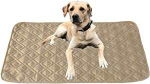 RBSC Home Anti-Slip Waterproof Dog Pad Dog Mat Rug for Small Dogs 2 Pack 30x30 Inch Reusable Puppy Pad for Training or Food