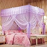 Uozzi Bedding Mosquito Net Bed Canopy-Lace Luxury 4 Corner Square Princess Fly Screen, Indoor Outdoor(Purple, Queen)