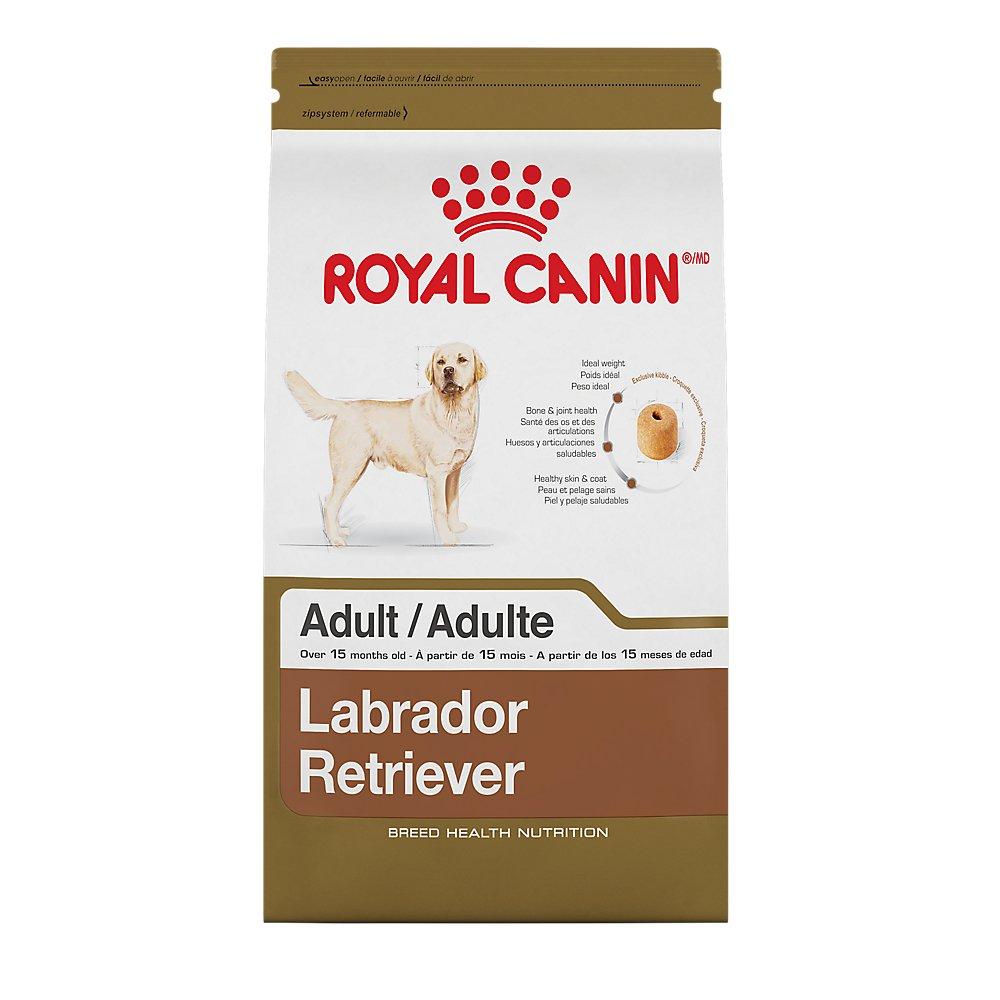 ROYAL CANIN BREED HEALTH NUTRITION Labrador Retriever Adult dry dog food, 30-Pound
