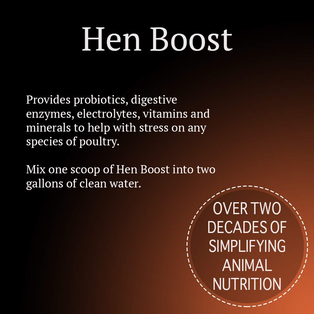 Animal Health Solutions - Hen Boost Probiotics, Help Boost Immunity and Hydration in Full Grown Chickens (8 ounces) by Animal Health Solutions (Image #4)