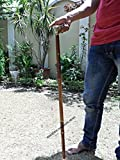 36'' Wooden Handmade 3 fold Beautiful Walking Stick with Solid Brass Handle. C-3227