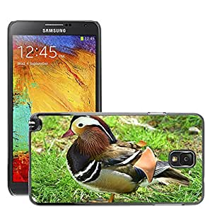 Super Stella Slim PC Hard Case Cover Skin Armor Shell Protection // M00145605 Mandarin Ducks Duck Bird Plumage // Samsung Galaxy Note 3 III N9000 N9002 N9005