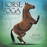 2016 Horse Yoga Wall Calendar