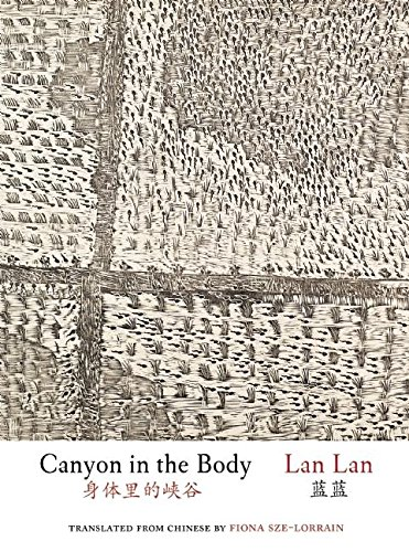 Download Canyon in the Body (Jintian) pdf epub