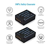 Venwo DMW-BLE9 Battery (2 Pack) and Fast Dual USB