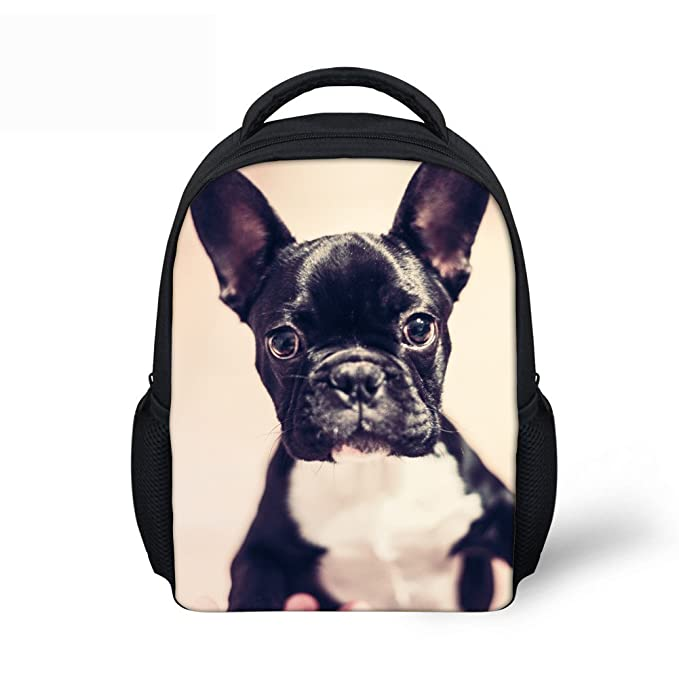 cac5d21413b1 Amazon.com | CHAQLIN Funny Dog Face Printing Backpacks for Children ...
