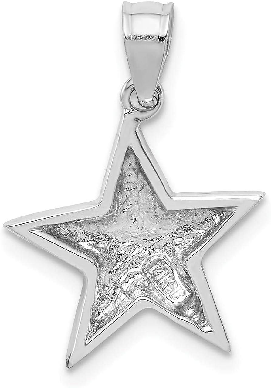 Lex /& Lu 14k White Gold White Polished Star Pendant
