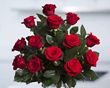 flowers for delivery on amazon bouquet of 25 red fresh roses delivered with free flower food