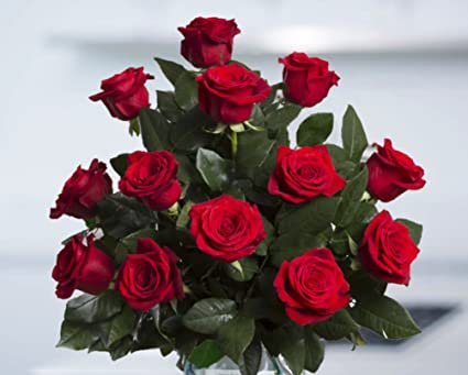 Amazon.com : flowers for delivery on amazon bouquet of 25 red fresh