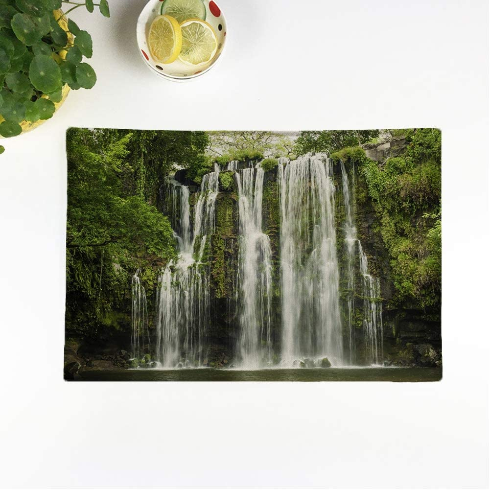rouihot Set of 8 Placemats Nature Llanos De Cortez Waterfall Located in Costa Rica Non-Slip Doily Place Mat for Dining Kitchen Table