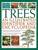 img - for Trees: An Illustrated Identifier & Encyclopedia: A Beautifully Illustrated Guide To 600 Trees, Including Conifers, Broadleaf Trees And Tropical Palms book / textbook / text book