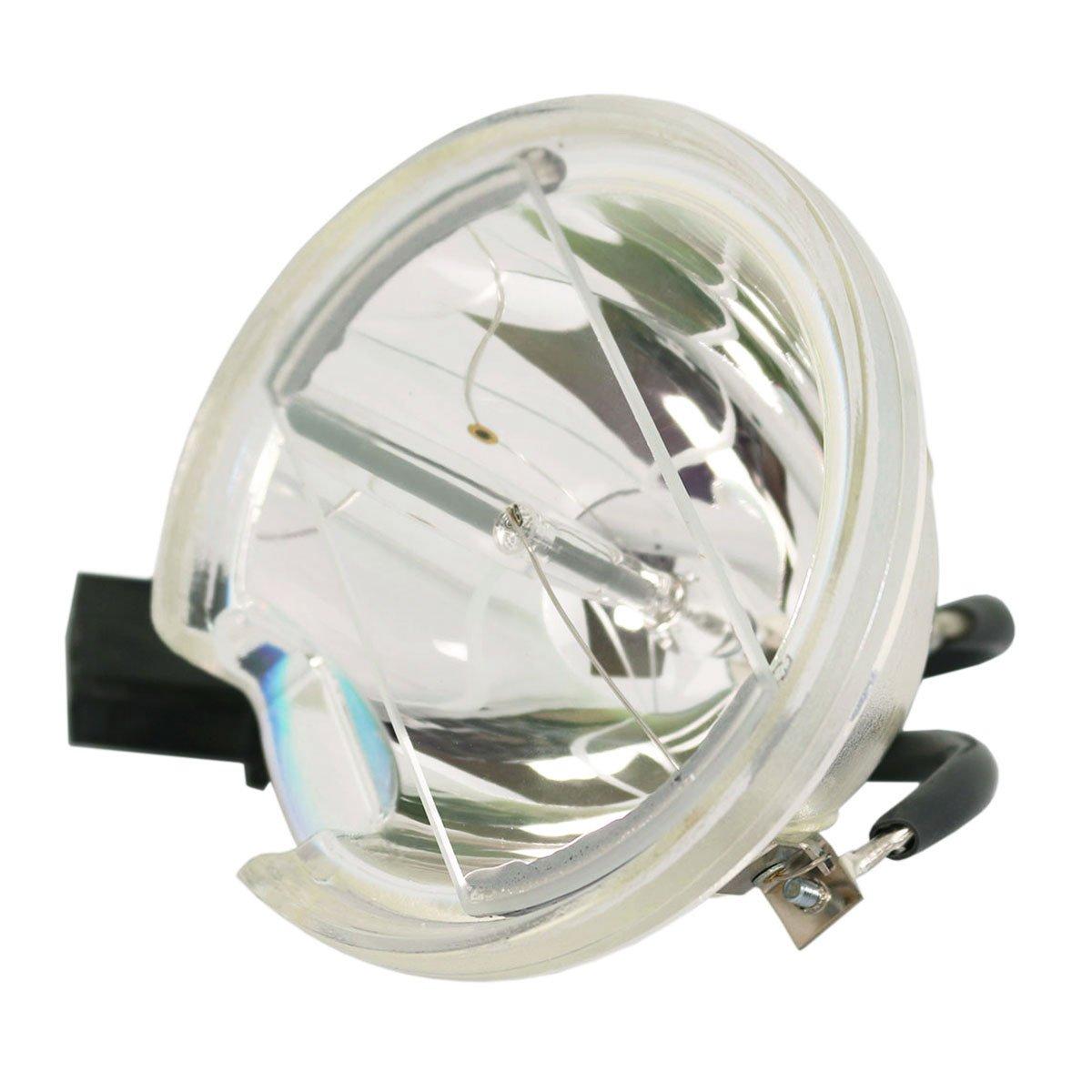 Lutema OEM 交換用ランプ ハウジング/電球付き 東芝 D95-LMP用 Economy Economy Lamp Only B07KTKXNHP
