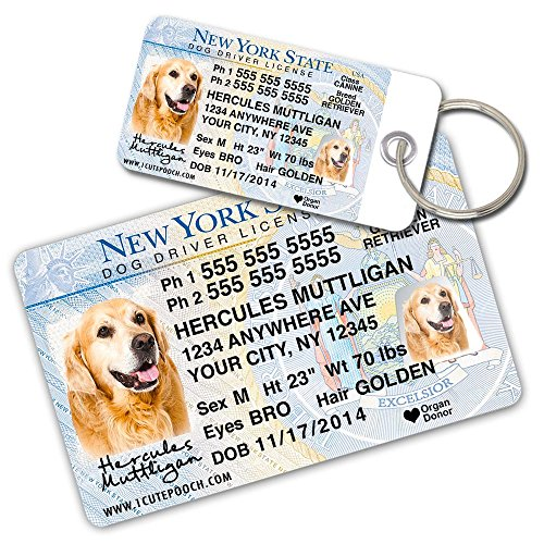 License Pet Tag - New York Driver License Custom Dog Tags for Pets (2) and Wallet Card - Personalized Pet ID Tags - Dog Tags For Dogs - Dog ID Tag - Personalized Dog ID Tags - Cat ID Tags - Pet ID Tags For Cats