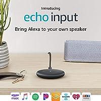 Echo Input Bring Alexa to Your Own Speaker (Black)