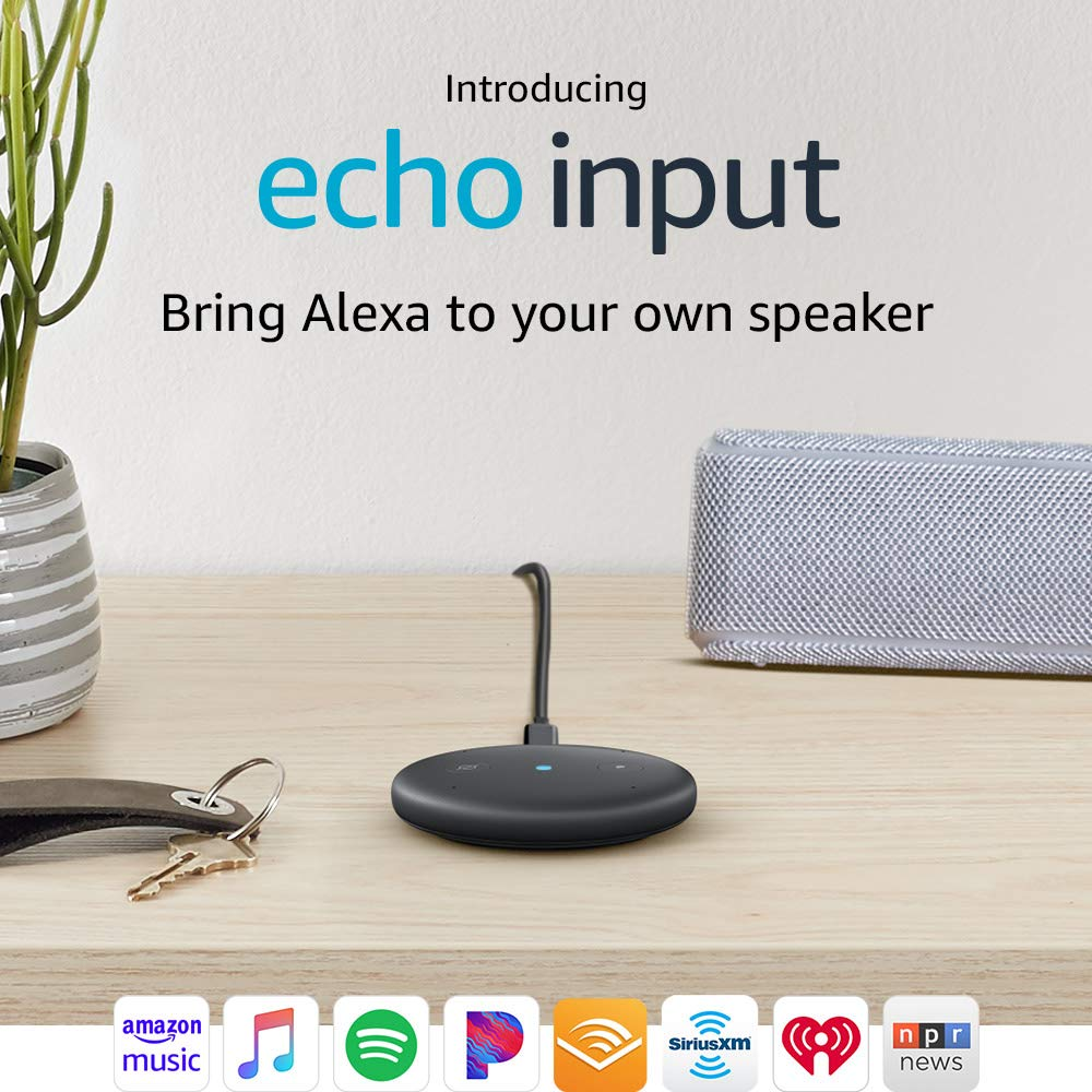 Echo Input ONLY $19.99 Shipped...