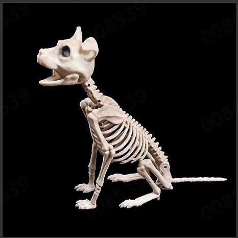 Wesracia Realistic Posable Animal Skeleton Life Size Halloween
