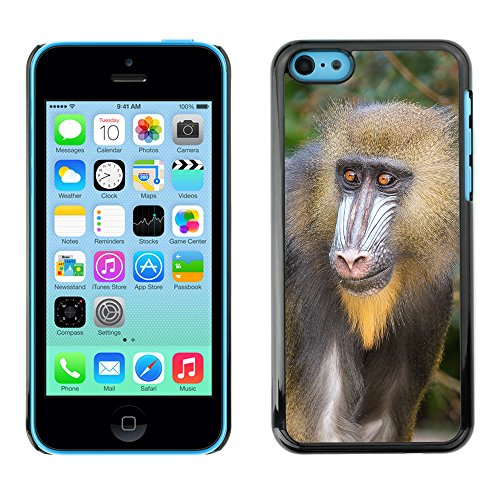 Premio Sottile Slim Cassa Custodia Case Cover Shell // F00032201 Big singe // Apple iPhone 5C