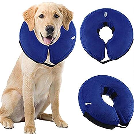 Glodenbridge Collar hinchable para cachorros de mascota 6P ...