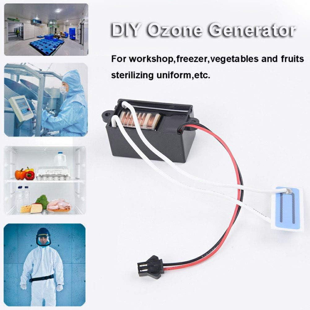 HEREB DC12V 200mg DIY generador de ozono purificador de aire para coche, desodorante para refrescar frutas y verduras: Amazon.es: Hogar
