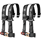 Pro Armor A114220 Black 4 Point Harness 2' Straps, 2 Pack