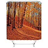 """CHARMHOME Beautiful Autumn Natural Landscape Forest Deciduous Bath Home Decor of Waterproof Bathroom Polyester Fabric Shower Curtains 66""""(w)x72"""" (h)Inch"""