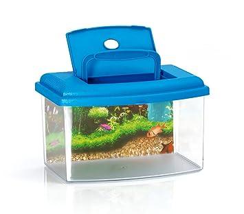10635 Acuario de plástico rígido rectangular 3L con tapa 22x16x14 cm - Azul claro