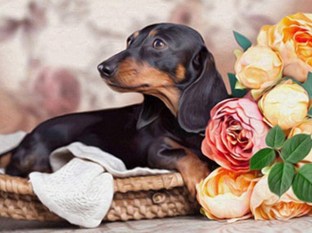 5D Perro Mascota DIY Diamante Pintura Completo Taladro Kits Cristal Bordar Manualidades para Home Decorar Pared, C01, Taladro redondo 20x25CM / 7.9x9.8 IN